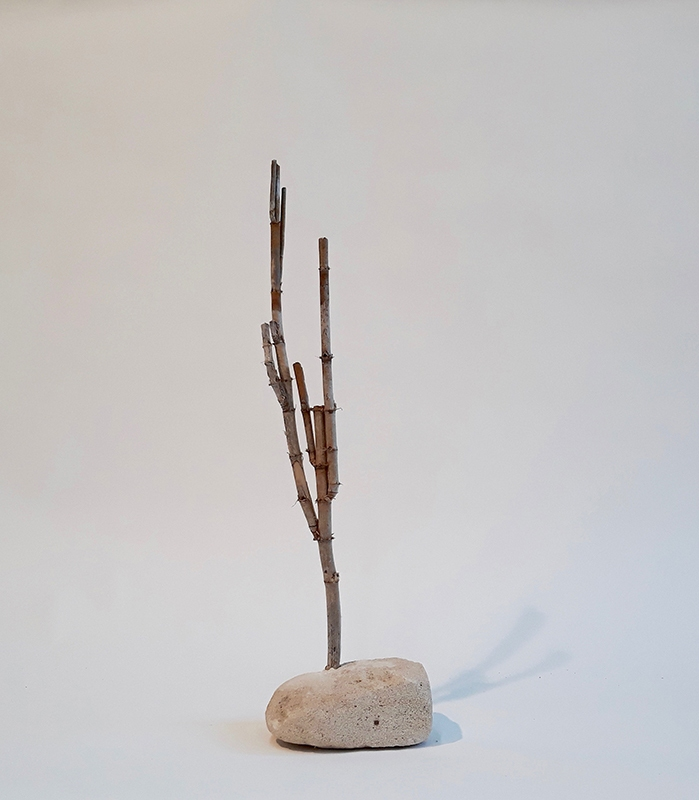 2018_wood_30cm_high